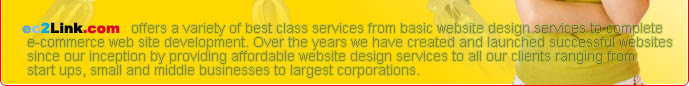 ec2Link.com Website Hosting offers a variety of best class services from basic website design services to complete e-commerce web site development. Over the years we have created and launched successful websites since our inception by providing affordable website design services to all our clients ranging from start ups, small and middle businesses to largest corporations.